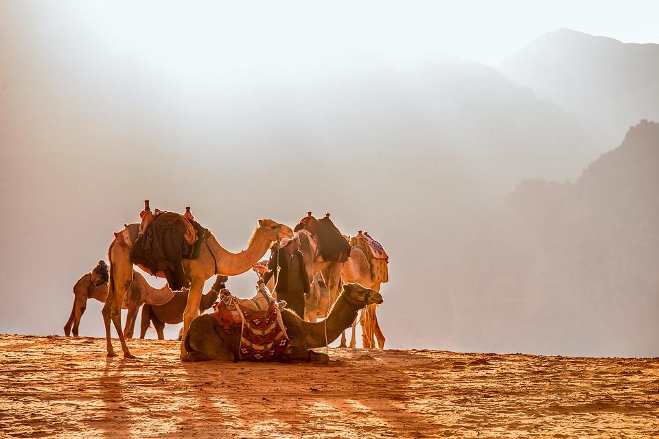 Il viaggio del Dromedario: la montagna e la meta